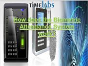 How does the Biometric Attendance System work