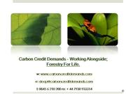 Carbon Credits And Carbon Neutral