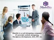 High-Experienced WordPress Website Development Company India