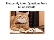Frequently Asked Questions From Feline Parents