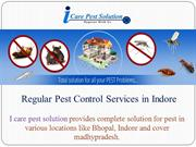 pest control services in indore