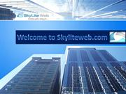 Grow Your Business Virtually; Try Our SEO Campaign Now
