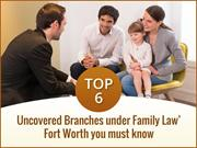 Top 6 Uncovered Branches under Family Law Fort Worth You Must Know