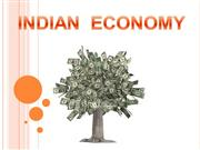 Indian Economy