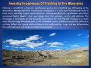 Amazing Experiences Of Trekking In The Himalayas