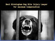 Best Birmingham Dog Bite Injury Lawyer for maximum Compensation