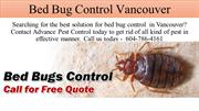Bed Bug Control Vancouver - Advancepest