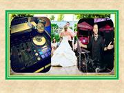 Why You Should Always Hire a Wedding DJ for Your Big Day