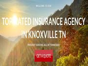Lisa Bushon Knoxville - Top Rated Insurance Agency Knoxville TN