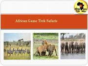 Planning to Going on Safari Tours In Kenya
