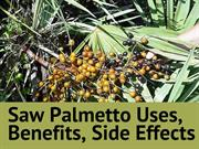 Benefits of Taking Saw Palmetto