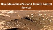 Blue Mountains Pest and Termite Control Services