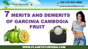 7 merits and demerits of garcinia cambogia fruit for weight loss