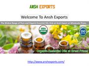 Organic Essential Oils Suppliers - Essential Oils at Wholesale