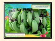 Need and Importance of eating Cavendish Banana