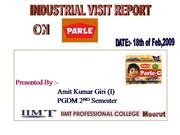 19509488-Parle-Project-Report