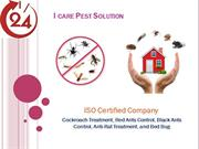Top Tips to Select the Best Pest Control Services in Bhopal