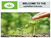 Buy Marijuana Seeds Online USA