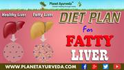 Diet Plan for Fatty Liver Patients