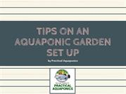 Practical Aquaponics - Tips On An Aquaponic Garden Set Up