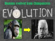 MYTH: Humans evolved from chimpanzees