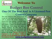 Best Pest Control Company Houston