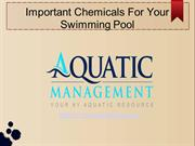 Important Chemicals For Your Swimming Pool