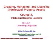 03-Licensing Litigation