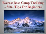 Everest Base Camp Trekking – Vital Tips For Beginners