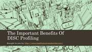The Important Benefits Of DISC Profiling