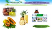 Natural Treatment for Dengue Fever - Permanent cure