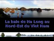 Viet Nam -Baie de Ha Long-