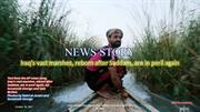 Iraq's vast marshes, reborn after Saddam, are in peril again- Oct 26 2