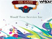 Woolf Tree Service In Eagle