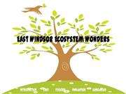 East Windsor Ecosystem Wonders