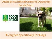 Order Best Artificial Grass for Dogs from Pooch Patch