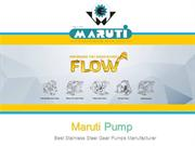 Top Quality SS Gear Pump Manufacturer - Exporter | Maruti Pump