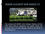 Water Cleanup New Haven CT
