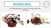 Send Beautiful Flowers, Cakes, Chocolates & Gifts This Christmas