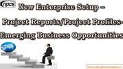 New Enterprise Setup - Project Reports/Project Profiles
