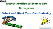 Project Profiles to Start a New Enterprise