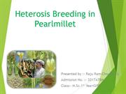 Heterosis Breeding in Pearlmillet (1)