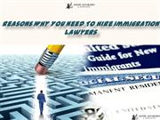 Reasons Why You Need To Hire Immigration Lawyers