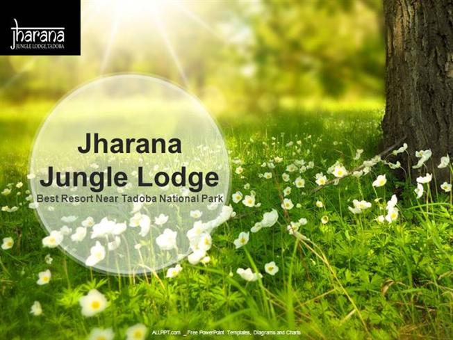 Luxury resort in tadoba jharana jungle lodge authorstream toneelgroepblik Gallery