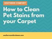 Steam Cleaning | Charlotte NC | How To Clean Pet Stains