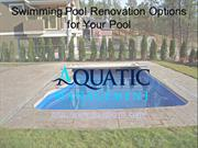 Swimming Pool Renovation Options for Your Pool