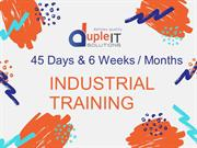 45 Days & 6 Weeks / Months Industrial training at Web Services.