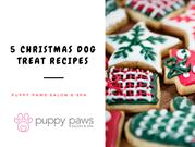 5 Christmas Dog Treat Recipes