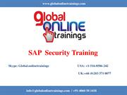 SAP Security Training | SAP Security Online Training - GOT