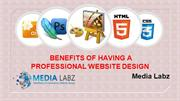 Positive aspects for a professional Website Design | Calgary